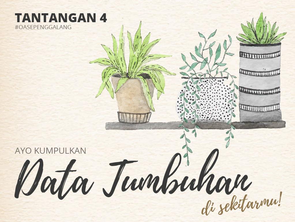 tantangan4-tumbuhan